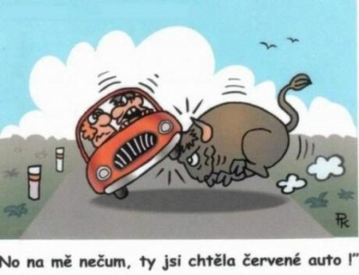 Vtipné obrázky - Útoook !