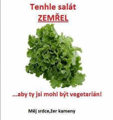 Vtipné obrázky - Chudák salátek